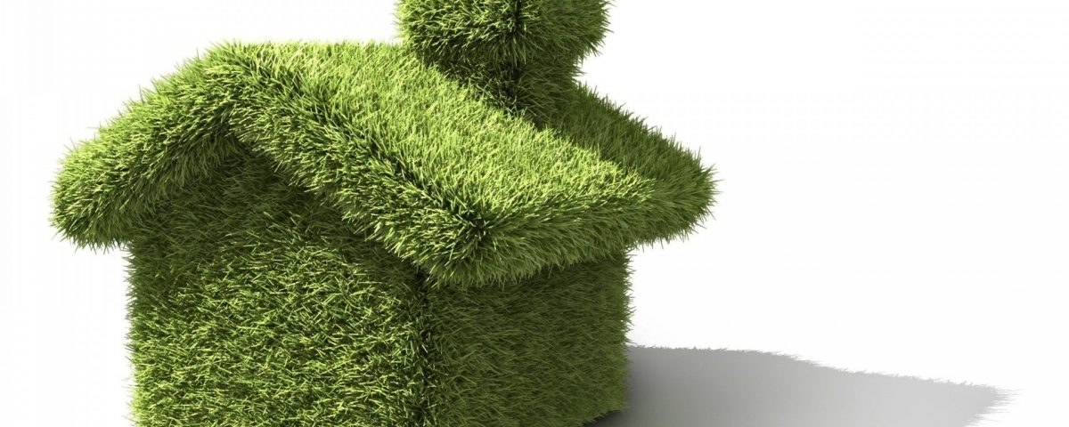 Ventajas del uso de productos de limpieza ecológico